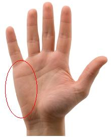 the part of your hand used to mute strings, just below the pinky finger