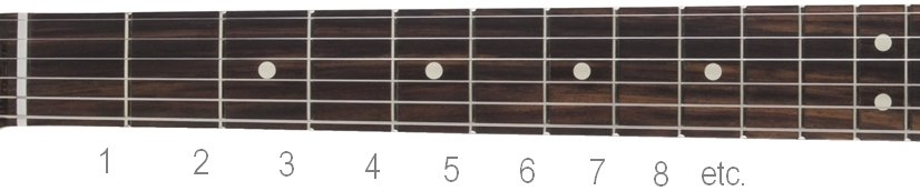 numbered guitar fretboard